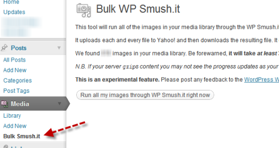 bulk wp smash.it